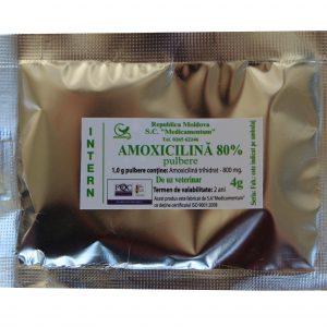 Amoxicilina 80%